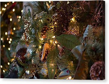 Canvas Print featuring the photograph Christmas Tree Splendor by Patricia Babbitt