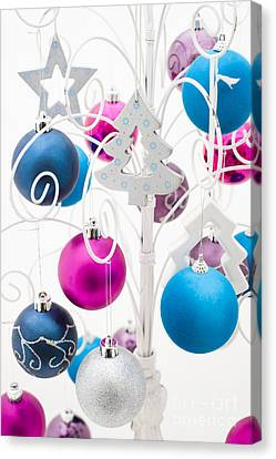 Silver Turquoise Canvas Print - Christmas Tree Tree by Anne Gilbert
