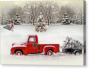 Christmas Trees Canvas Print