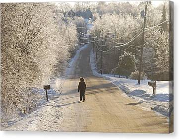 Christmas Walk In Maine Canvas Print by Alan Holbrook