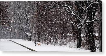 Canvas Print featuring the photograph Christmas Walk by Jacqueline M Lewis