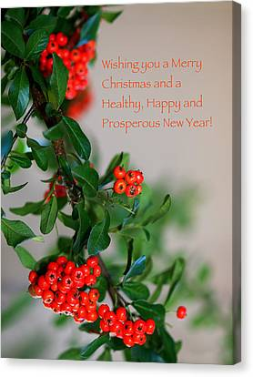 Canvas Print featuring the photograph Christmas Wishes by Annette Hugen