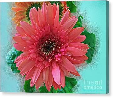 Canvas Print featuring the photograph Chrysanthemum by Gena Weiser