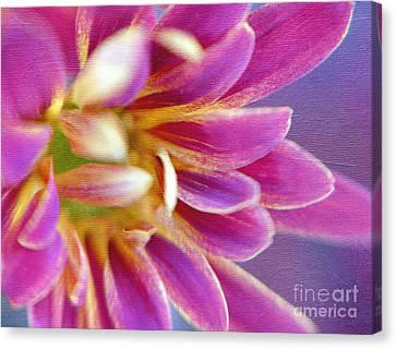 Chrysanthemum Painting Canvas Print by Irina Wardas