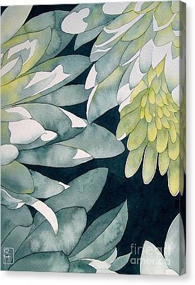 Chrysanthemums Canvas Print by Robert Hooper