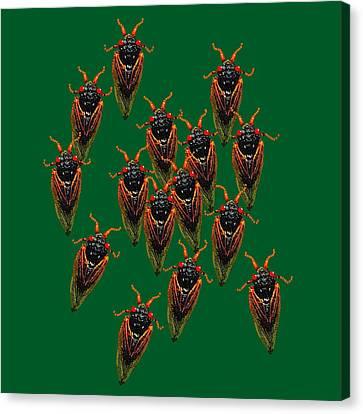 Cicadas In Green Canvas Print by R  Allen Swezey