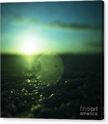 Circle In Square - Medium Format Analog Hasselblad Film Photo Canvas Print by Edward Olive