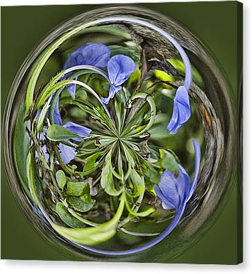 Circle Of Blues Canvas Print by Anne Rodkin