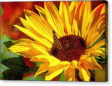 Circle Of Life............. Canvas Print