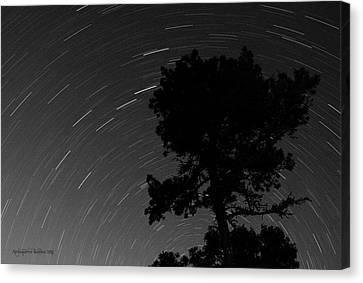 Circling Stars Canvas Print by Aleksander Rotner