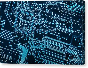 Circuit Board Canvas Print by Carlos Caetano