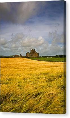Cistercian Dunbrody Abbey 1182 Canvas Print by Panoramic Images