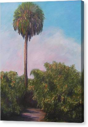 Citra Fl Orange Grove Canvas Print