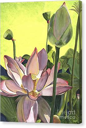 Citron Lotus 2 Canvas Print by Debbie DeWitt
