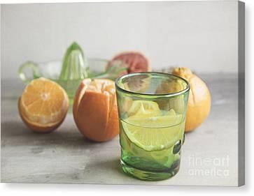 Citrus Bright Canvas Print by Elena Nosyreva