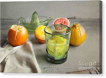 Citrus Fresh Canvas Print by Elena Nosyreva