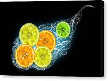 Citrus Fruits On A Black Background Canvas Print