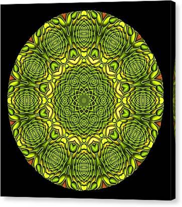 Citrus K12-35 Canvas Print by Doug Morgan