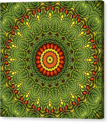 Citrus K20-34 Canvas Print by Doug Morgan
