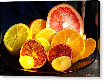 Citrus Season Canvas Print by Anastasia Savage Ealy