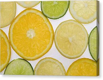 Citrus Slices Canvas Print by Kelly Redinger