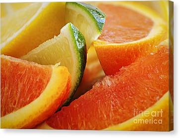 Citrus Wedges Canvas Print by Elena Elisseeva