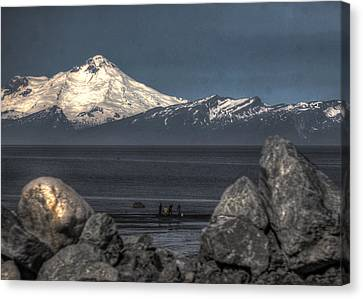 Clamming On The Cook Inlet Canvas Print by David Kehrli