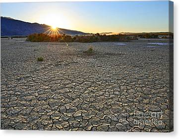 Clark Dry Lake Located In Anza Borrego Desert State Park In California. Canvas Print by Jamie Pham