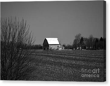 Classic Barns Canvas Print by Alys Caviness-Gober