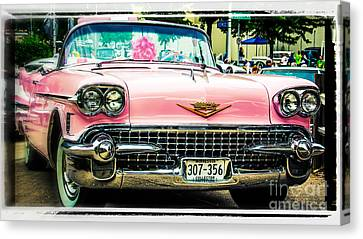 Classic Pink Cadillac Canvas Print by Perry Webster
