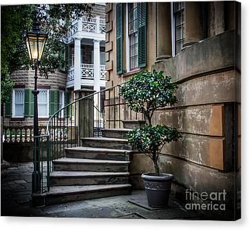 Classic Savannah Canvas Print by Perry Webster