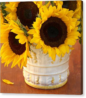 Classic Sunflowers Canvas Print by Art Block Collections