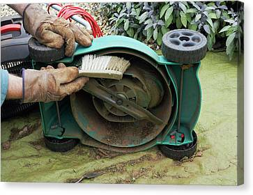 Cleaning A Lawnmower Canvas Print by Geoff Kidd