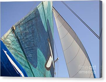 Clear Skies And Full Sails Canvas Print by Jennifer Apffel
