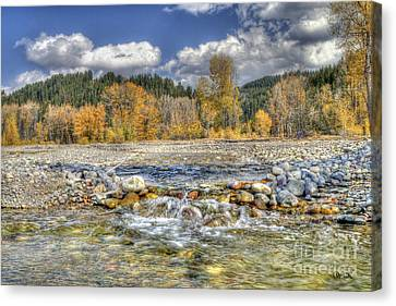 Clear Stream Canvas Print