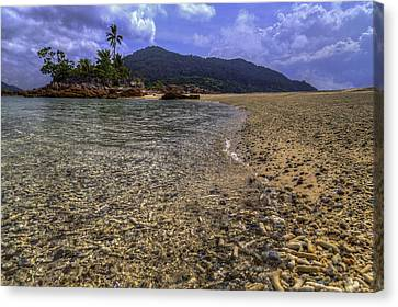 Redang Canvas Print - Clear Waters by Mario Legaspi