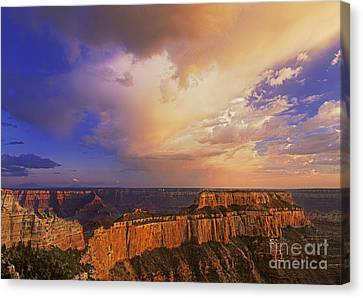 Clearing Storm Cape Royal North Rim Grand Canyon Np Arizona Canvas Print by Dave Welling