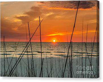 Clearwater Sunset 2 Canvas Print by Mike Ste Marie