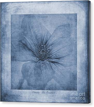 Clematis Cyanotype Canvas Print by John Edwards