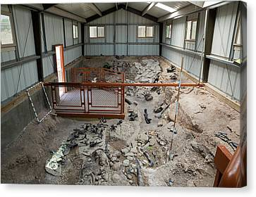 San Rafael Swell Canvas Print - Cleveland-lloyd Dinosaur Quarry Fossils by Jim West