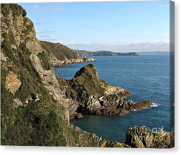 Cliffs In Cornwall Near Mevagissey Canvas Print by Kiril Stanchev