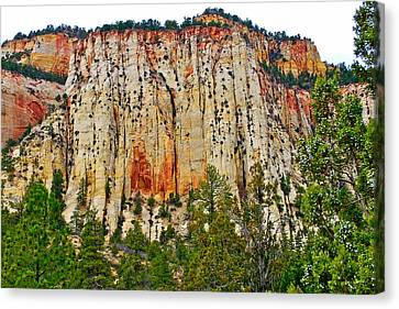 Cliffs Near Checkerboard Mesa Along Zion-mount Carmel Highway In Zion National Park-utah Canvas Print