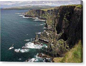 Cliffs Of Moher Canvas Print - Cliffs Of Moher by Bob Gibbons