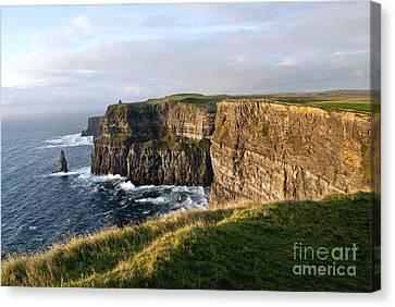 Cliffs Of Moher Evening Light Canvas Print