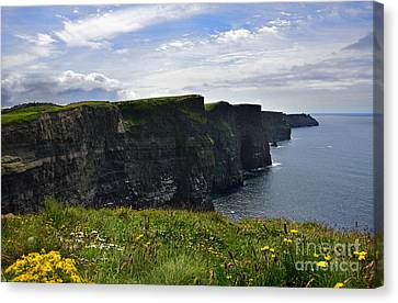 Cliffs Of Moher Looking South Canvas Print by RicardMN Photography