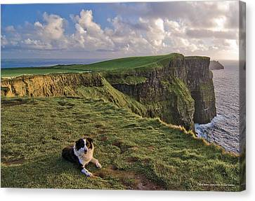 Cliffs Of Moher Canvas Print - Cliffs Of Moher  by Sean Tomkins for Ireland of the Welcomes