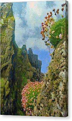 Cliffside Sea Thrift Canvas Print