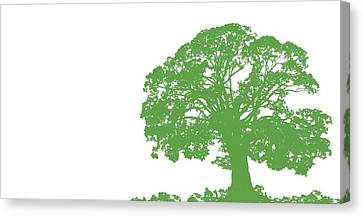 Oak Canvas Print - Climbing Tree by Sarah Hough