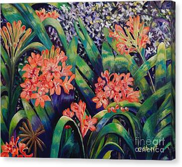Clivias In Bloom Canvas Print by Caroline Street