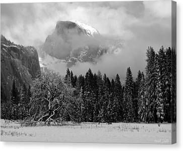 Cloaked In A Snow Storm - Monochrome Canvas Print by Heidi Smith